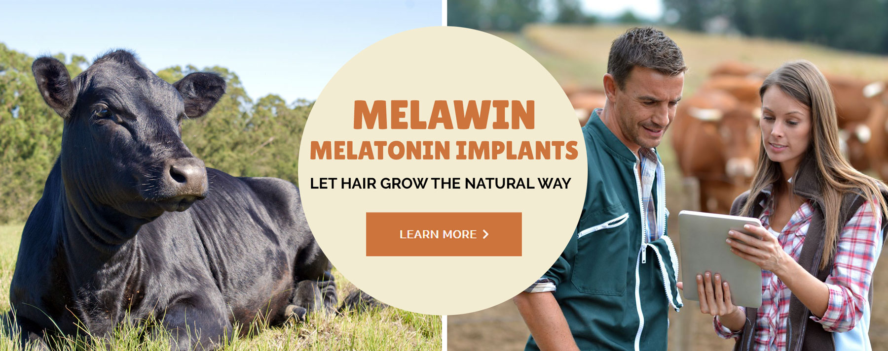 Melawin Melatonin Implants: Let Hair Grow the Natural Way. Learn More.